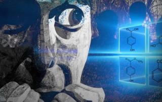 Паранойя — что это за болезнь, симптомы и признаки