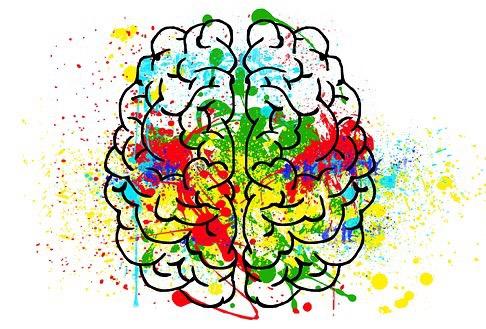Что такое психология, и что она изучает?