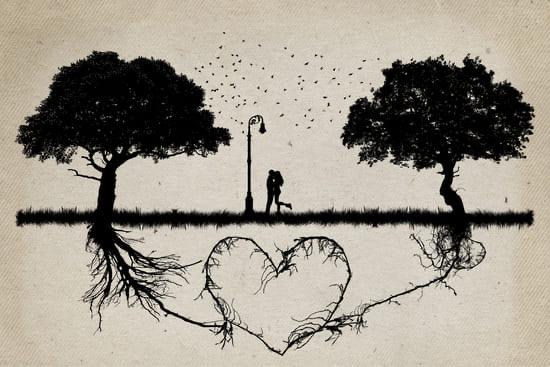 Взаимная любовь и доверие