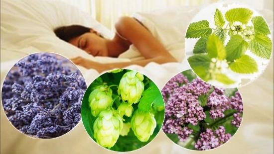 Народные рецепты и лекарственные препараты, для улучшения сна