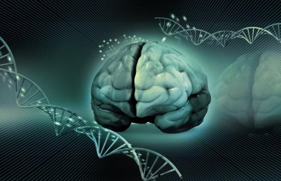 Инфекционные заболевания головного мозга