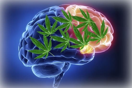 Лечение и профилактика эпилепсии