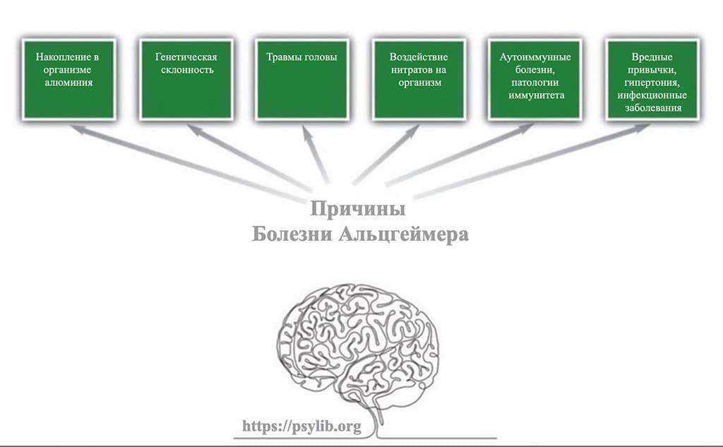 Причины Альцгеймера